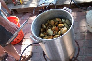 How we eat clams around here