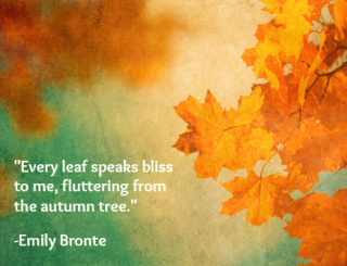 Fall quote Emily Bronte