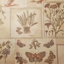 Piedmont A Gardeners Cronicle by John H. Hardy Folio Fabric (2)